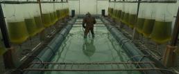 Blade Runner 2049 Screencap Screenshot (47)